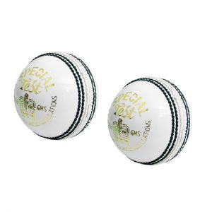 CW Special Test White Cricket Ball