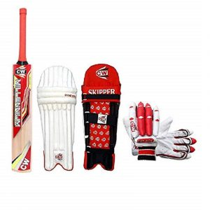CW Trainer Red Blue Wooden Cricket