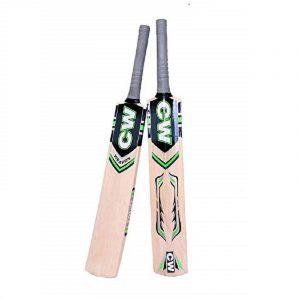 CW Beginner Cricket Set Tennis Cric